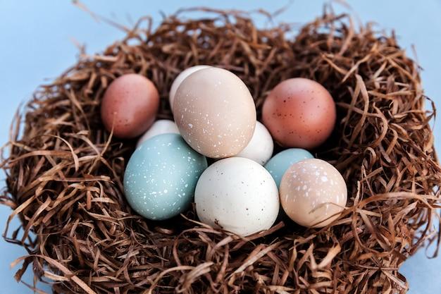 Uova colorate di vacanza di pasqua nel nido per la celebrazione tradizionale