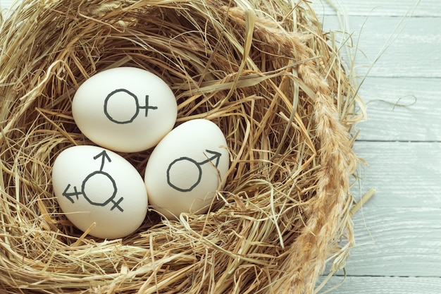 Uova con il simbolo dei simboli di genere transgender, femminile e maschile