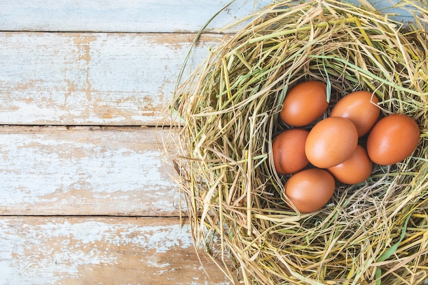 Uova crude fresche dalla fattoria