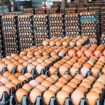 Uova dalla fattoria di pollo nel pacchetto
