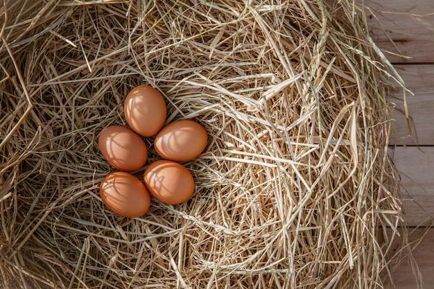 Uova di gallina in un nido di pollo su paglia di riso