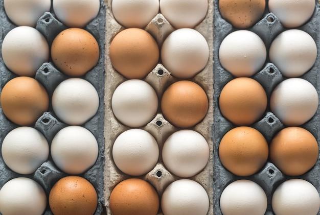 Uova di gallina nel vassoio dell'uovo delle cellule