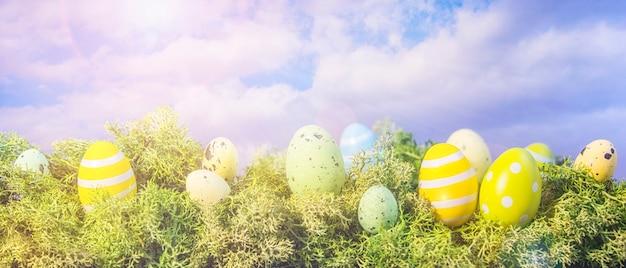 Uova di pasqua che si nascondono nell'erba