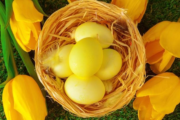 Uova di pasqua con il fiore su erba verde