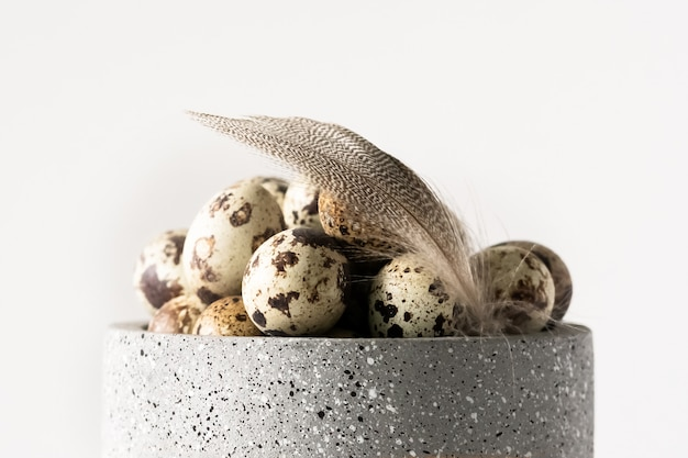 Uova di pasqua e piume di quaglia