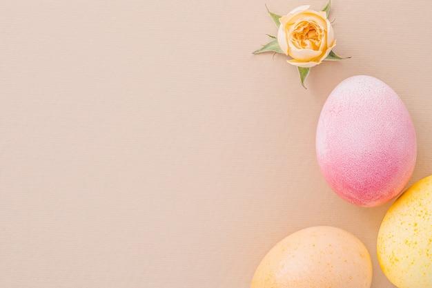 Uova di pasqua e una piccola rosa sul documento di struttura