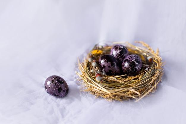 Uova di pasqua in un nido e con i fiori sulla parete blu.