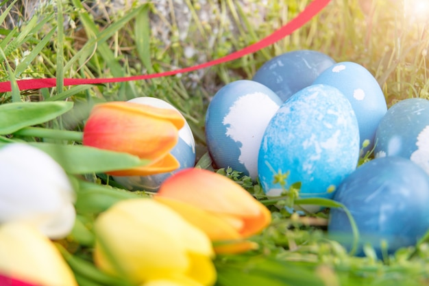Uova di pasqua organiche blu, sfondi di concetto di pasqua