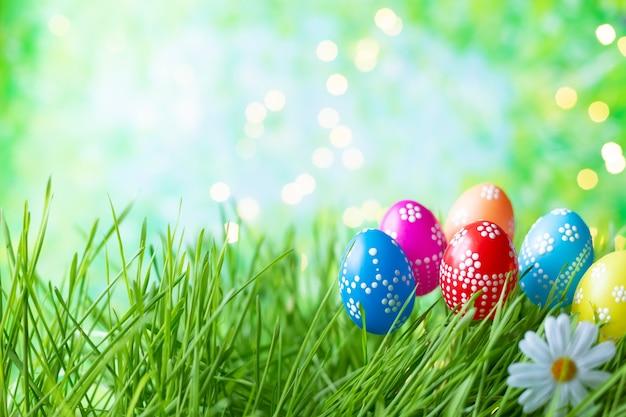 Uova di pasqua su erba verde con bokeh e luce solare su una priorità bassa blu