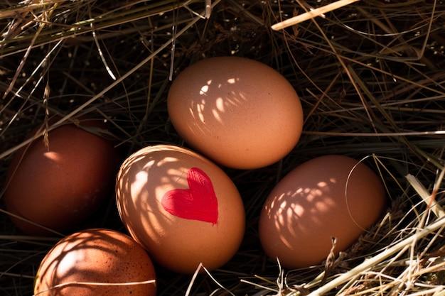 Uova di pasqua tradizionali del primo piano con cuore dipinto