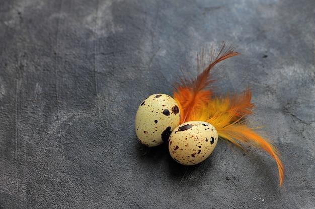 Uova di quaglia con piume su sfondo scuro. sfondo vacanze di pasqua.
