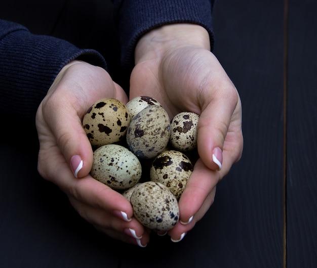 Uova di quaglia in mano della donna. sfondo vacanze di pasqua.