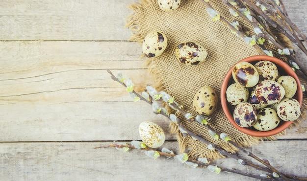 Uova di quaglia su uno sfondo bella primavera. messa a fuoco selettiva