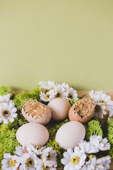 Uova e fiori su verde