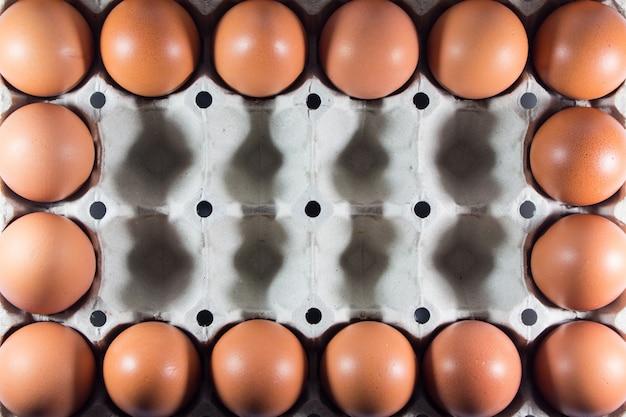 Uova fresche dalla fattoria nel libro bianco del pannello.