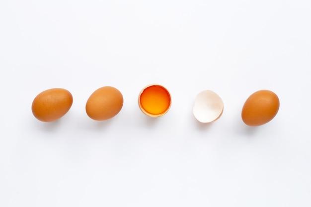 Uova impostate isolate