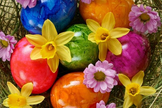 Uova multicolori, margherite viola e primo piano giallo dei narcisi.