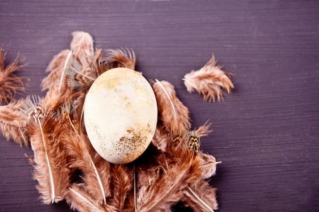 Uovo bianco di pasqua in una pentola con le piume sullo sfondo nero