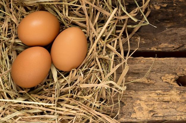 Uovo. cannuccia. su legno