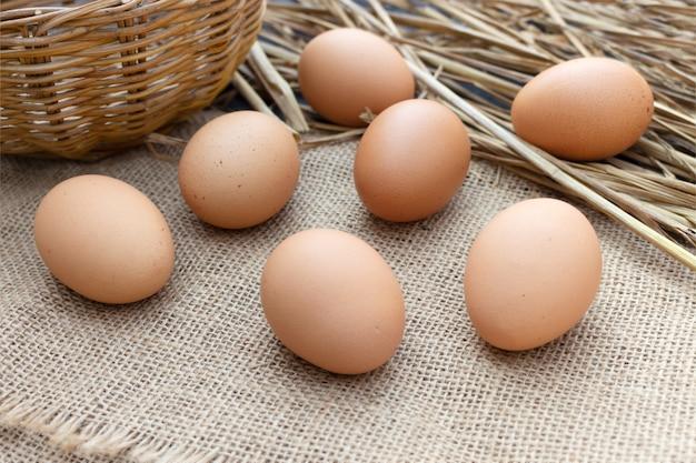 Uovo del primo piano sul sacco