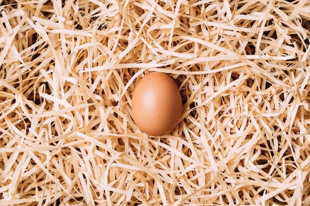 Uovo di gallina marrone fresco su fieno