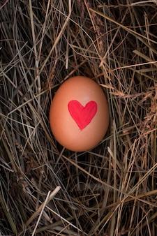 Uovo di pasqua del primo piano con cuore dipinto