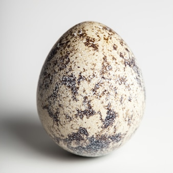 Uovo di quaglia su bianco