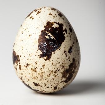 Uovo di quaglia su un bianco