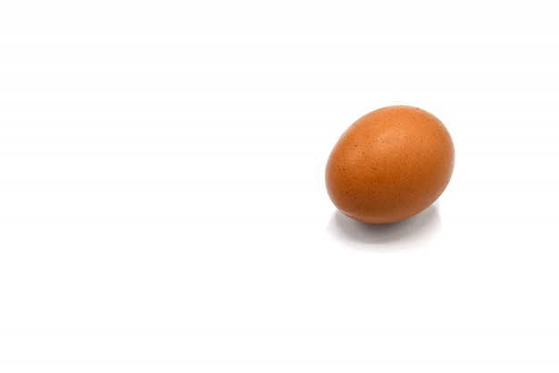 Uovo e un'ombra su fondo bianco