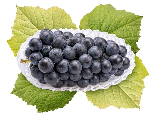 Uva da vino nella confezione su foglie di vite isolate su bianco. uva kyoho isolata su bianco con il percorso di residuo della potatura meccanica.