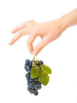 Uva dolce e gustosa in mano della donna graziosa