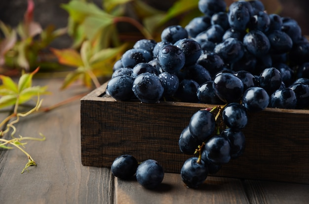 Uva nera fresca in vassoio di legno scuro sulla tavola di legno