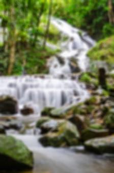 Vago della cascata con la foglia gialla a mae kampong, chiang mai, tailandia nella vista verticale