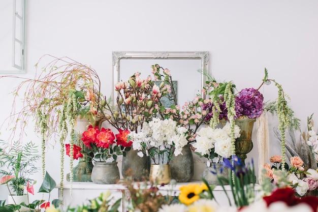 Vari fiori e piante sullo scaffale