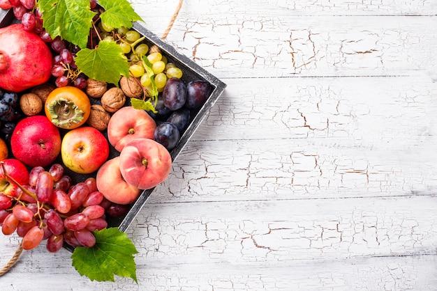 Vari frutti autunnali
