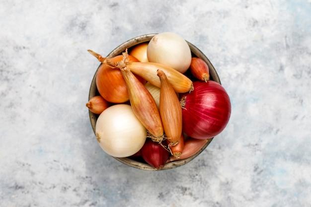 Vari tipi di cipolle rosse, bianche, gialle, scalogno, vista dall'alto