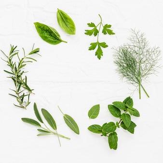 Varie erbe fresche su fondo di legno bianco.