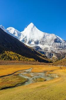 Variopinto nella foresta di autunno e montagna della neve alla riserva naturale di yading, l'ultimo shangri la