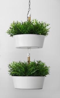 Vasi bianchi appesi artificiali decorativi della pianta isolati