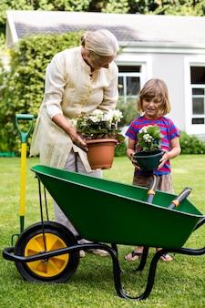 Vasi da fiori della tenuta del nipote e della nonna all'iarda