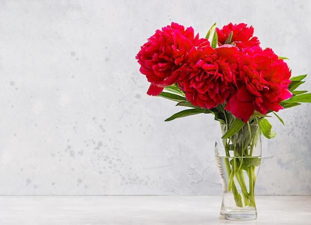 Vaso con bellissimi fiori di peonie magenta