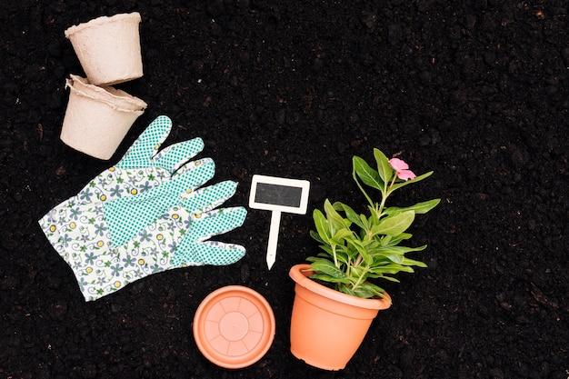 Vaso di fiore di vista superiore sul fondo del suolo