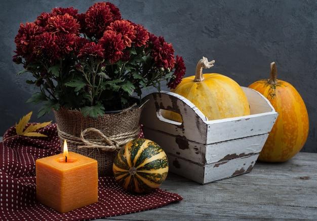 Vaso di fiori di crisantemo rosso