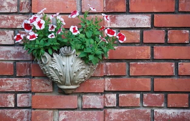 Vaso di fiori di petunia sul muro di mattoni