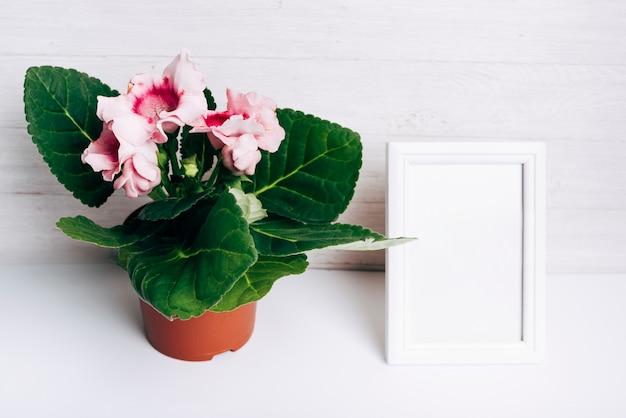 Vaso di fiori rosa con cornice bianca vuota sulla scrivania