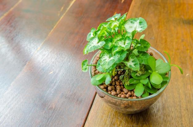 Vaso di fiori su un tavolo di legno in caffetteria
