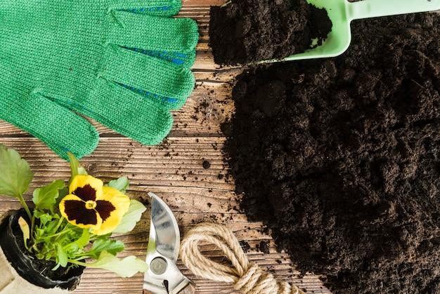 Vaso di fiori viola del pensiero; attrezzi da giardinaggio e guanti con terreno fertile sullo scrittorio di legno