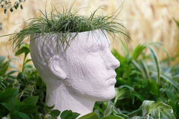Vaso per piante da interno a forma di testa di uomo
