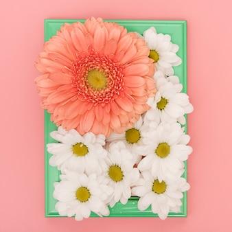 Vassoio vista frontale con margherite e fiori di gerbera