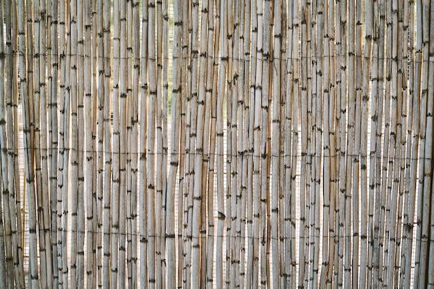 Vecchi fondo e struttura di bambù della parete